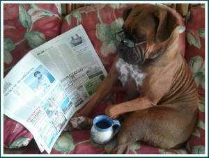 Patton reading